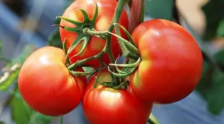 夏季养心,7大红色食物有奇效